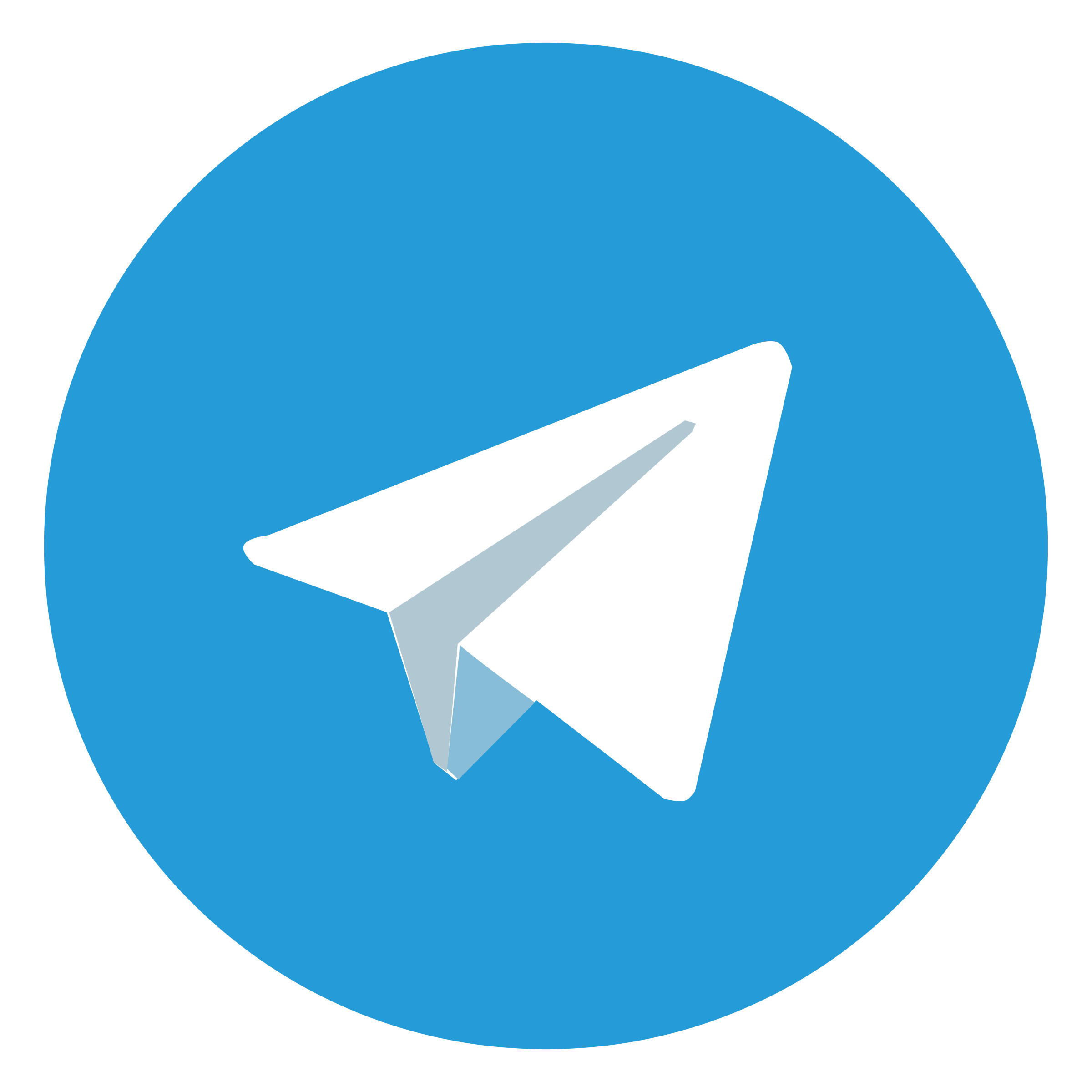 фото: лого Telegram